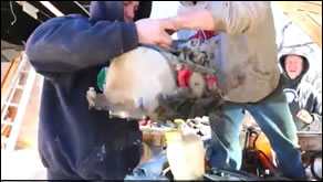 Engine Running Rough, Overheats, and Has Milky Oil - Pulling Engine top to get to Head Gasket