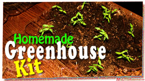 Homemade tomato seed starting greenhouse kit thumbnail