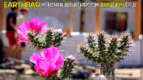 Frame in Shower, 3 Bag Layers & Chicks Hatch! | Kitchen & Bathroom Earthbag Addition Ep8 | Weekly Pk